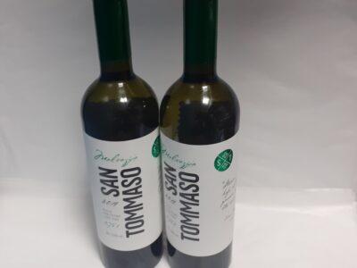 belo vino sorta malvazija